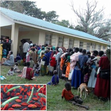 TMek: il nuovo test diagnostico rapido per la Malaria