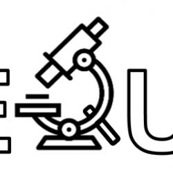 IL PROGETTO AEQUIP: INTEGRAZIONE TRA DIGITAL PATHOLOGY E IMAGE PROCESSING