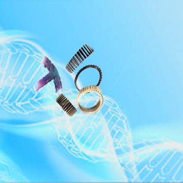 Nano-genE: NANO-TRANSDUCERS FOR GENE EDITING